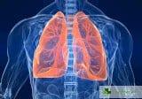 Топ 5 доказани начина за укрепване на здравето на белите дробове