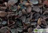 Люспа от какаови зърна ново потенциално лекарство за диабет