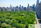 Паркове и зелени площи правят градските жители дълголетници