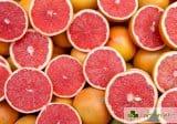 Акцент червено – домати и кървави портокали спасение при диабет