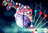 Преминават към директно управление на човешкия геном