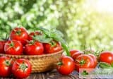 Топ 11 причини да ядем домати всеки ден