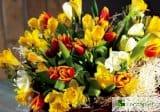 Букет при алергии – кои цветя са най-безопасни за подарък за 8 март