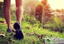 10000 крачки дневно не са спасение от трупането на излишни килограми