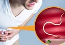 Защо децата са по-предразположени към паразитни инвазии