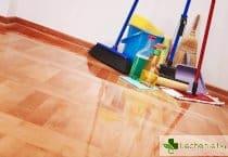 Почистването на дома унищожава бактериите, но се заместват от гъбички