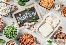 Как да използваме протеина от растителни източници