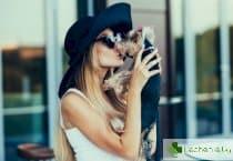 Капноцитофаг - смъртоносната целувка на кучето или на котката