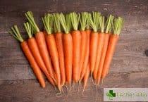 Защо прекаляването с моркови е опасно за здравето