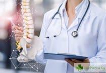 Вредните навици, които разрушават гръбначния стълб