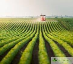 Разрешават пазарите и обработването на земята с нова заповед
