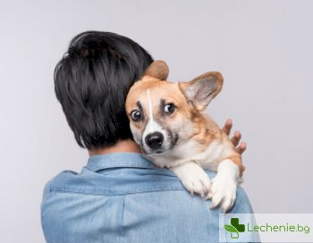 Кучетата стават агресивни, когато стопаните са изнервени