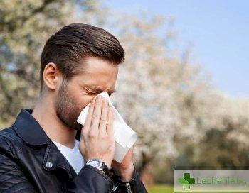 Заради алергии престъпността намалява през пролетта
