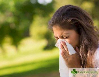 Прашец или инфекция – болести, които грешно са смятани за алергия