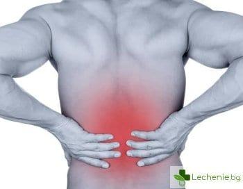 5 съвета за облекчаване на болките в гърба по време на екскурзия