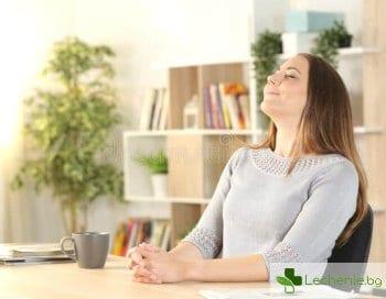 Кристално чист въздух у дома - как да го постигнем с минимални усилия