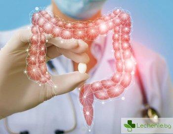 Тайнственото взаимодействие на чревни бактерии и лекарства