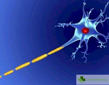 Как страничните ефекти на лекарствата за множествена склероза понижават продуктивността