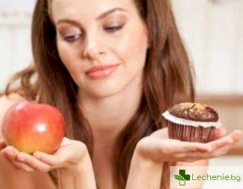 Основи на диетичното хранене