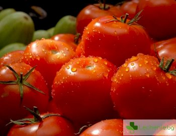 Свежи рецепти с домати, подходящи за горещите летни дни