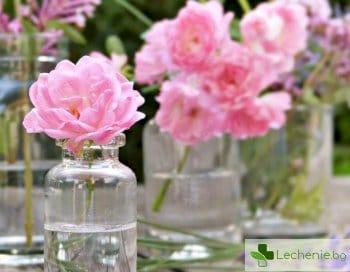Етерични масла, които са ефективни заместители на парфюм