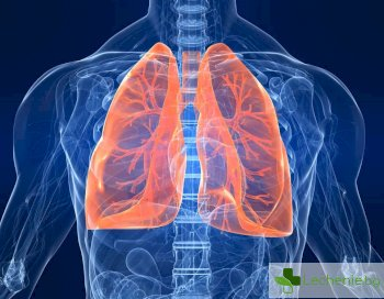 5 доказани от науката начина за укрепване на белите дробове