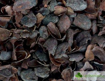 Люспи от какаови зърна може да са лекарство против диабет