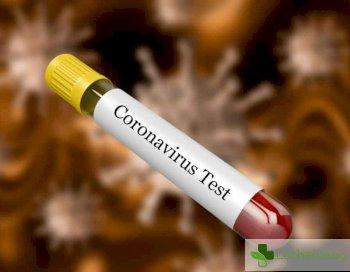 Смъртност от коронавирус под 4%, заразени 113000