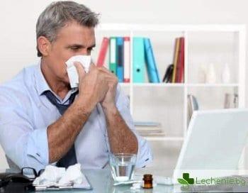Офис алергия - причини за възникване и начини за защита