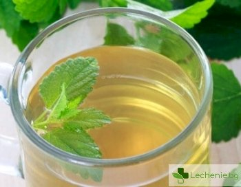 5 причини защо липовият чай е полезен за здравето