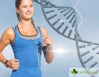 Начин на живот срещу гените - може ли да се повлияе на наследствеността