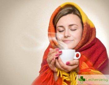Билкова терапия при лечение на простуда - топ 5 най-използвани билки