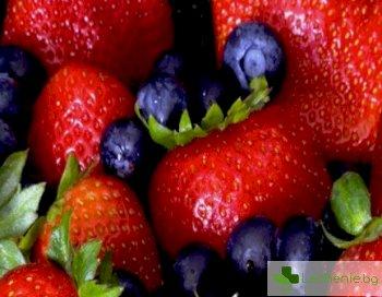 Топ 5 на най-ценните антиоксидантни храни и напитки