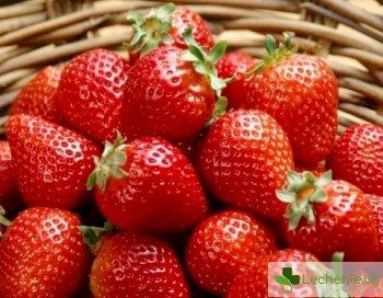 Как да оздравите своя организъм в сезона на ягодите