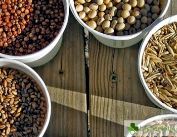 Увреждат ли зърнените храни кожата