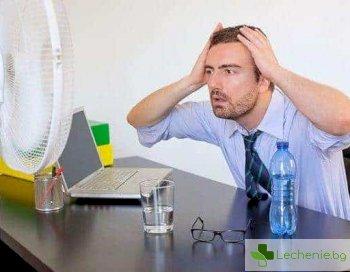 Отпускарска обстановка - как жегата влияе на мозъка