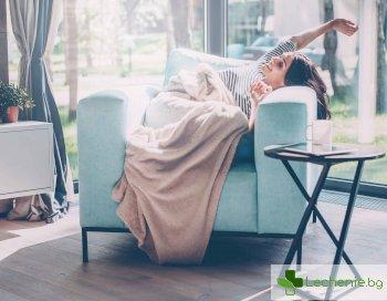 Защо мързелът е полезен и повече от необходим в живота