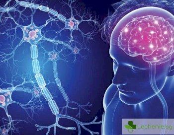 С чужд език може да се избавим от проявленията на множествена склероза
