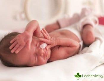 Какво трябва да е правилното развитие на недоносените деца