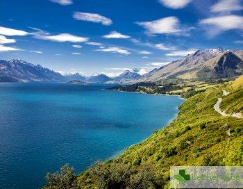 Нова Зеландия пребори COVID-19 само с 14 дни карантина