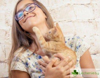 Одраскване от котка провокира симптоми на шизофрения при 14-годишен
