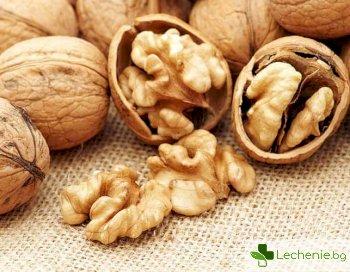 Орехите най-полезните за сваляне на килограми ядки