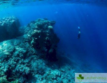 Нови антибиотици - как учените ги откриха в океана