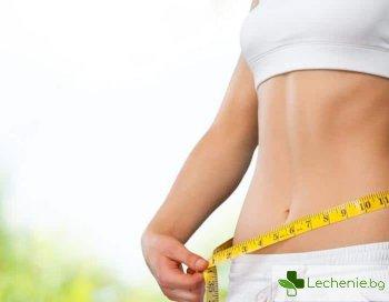 Психологическо тегло - защо тялото не ни позволява да отслабнем