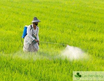 Открити са 160 тона изтекли пестициди в Пловдивско след проверката