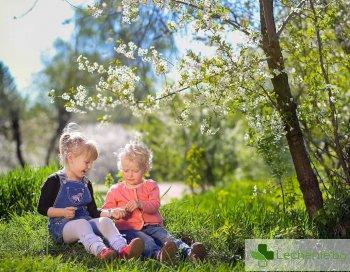 Укрепване на имунитета през пролетта - как се прави