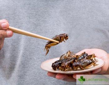 Бръмбари и скакалци с повече полезни вещества от месото