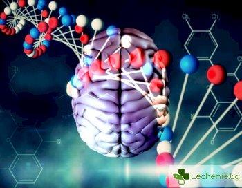 Преминава се към директно управление на човешкия геном