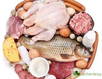 Полезните свойства на протеина