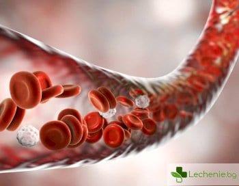 Разрушаване на еритроцити - хемолиза